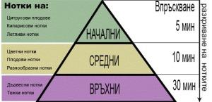 perfume-pyramid